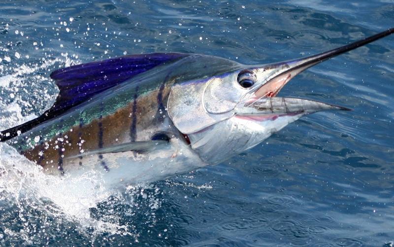 Costa-Rica 124
